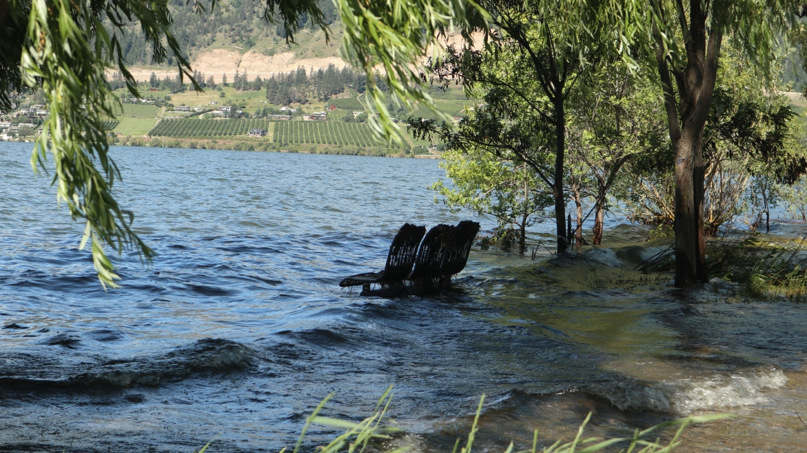 2017-06-09 Lake Country_Swan Lake-42