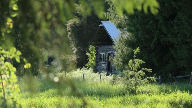 2017-06-11 Enderby_Whispering Pines-38
