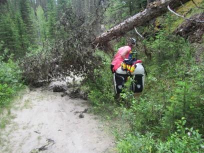 2017-06-30 GDV Banff_Spray lake-14