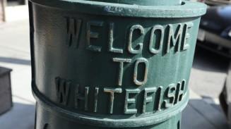 2017-07-15 Whitefish-84