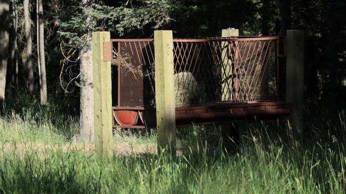 2017-07-21 Holland Lake_Cotton Wood lakes-41