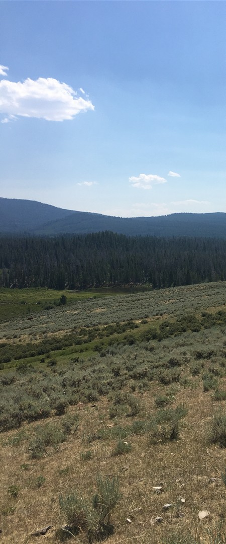 2017-08-01 Butte_Beaver Camp-7