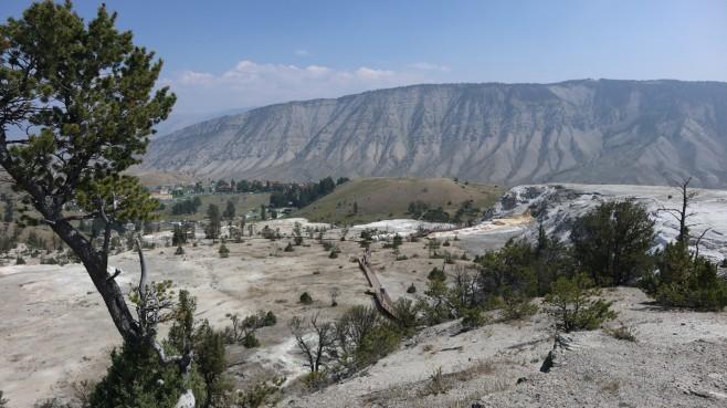 2017-08-10 Yellowstone-286