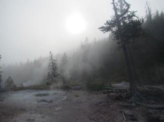 2017-08-10 Yellowstone-38