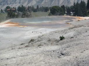 2017-08-10 Yellowstone-86