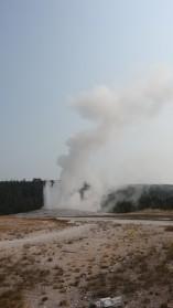 2017-08-11 Yellowstone-288