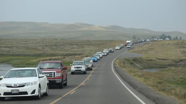 2017-08-11 Yellowstone-512