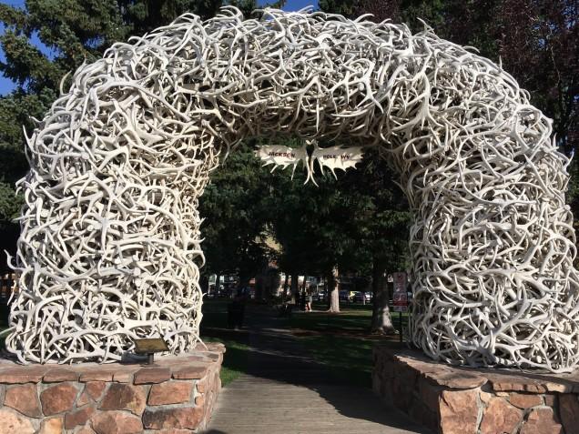 2017-08-15 Jackson Hole_Elkhorn-5
