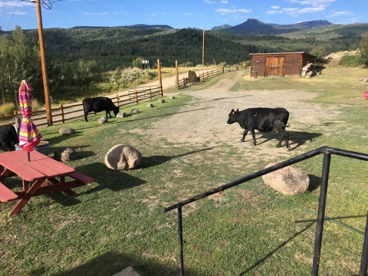 2017-08-26 Brush Mtn Lodge_Steamboat Springs-9