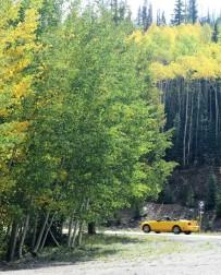 2017-09-10 Spruce CG_Neellie Creek-37 (3)