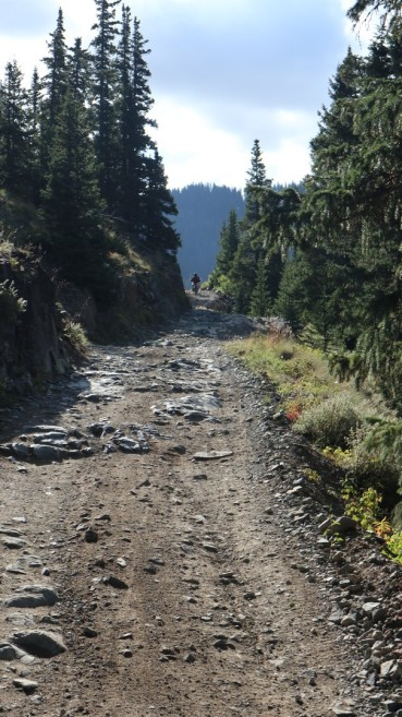 2017-09-12 Mineral Creek_Ouray-32
