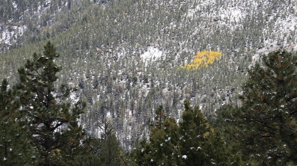 2017-10-03 Torrey_Boulder-25