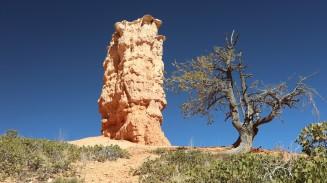 2017-10-07 Bryce Canyon-216