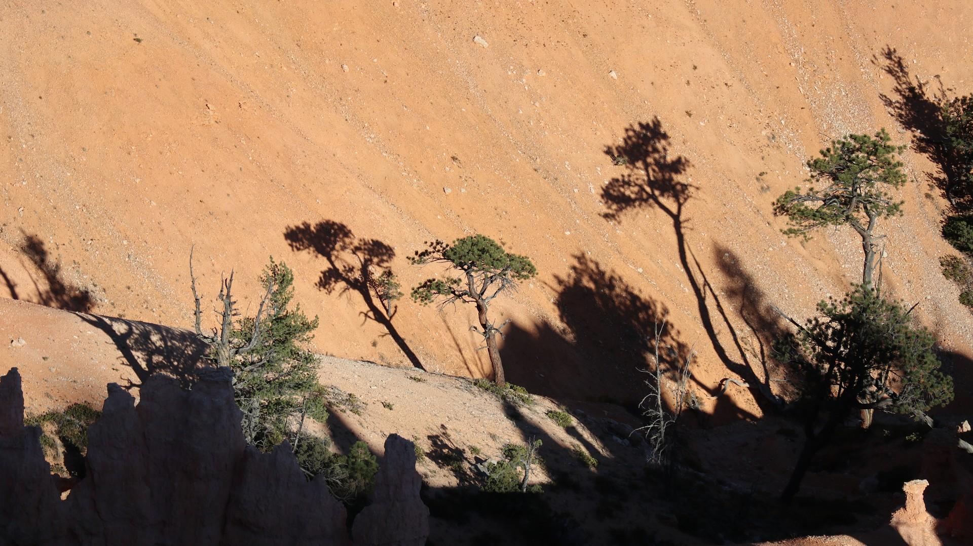 2017-10-08 Bryce Canyon-42