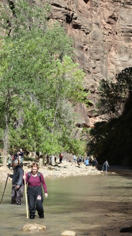2017-10-11 Zion NP-79