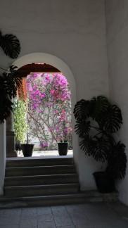 2018-04-04 Oaxaca-10