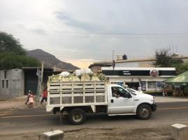 2018-04-06 Oaxaca_San Pedro Totolapan-44