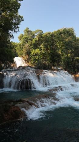 2018-04-18 San Cris (Palenque)-13