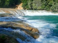 2018-04-18 San Cris (Palenque)-142