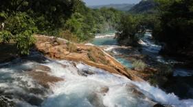 2018-04-18 San Cris (Palenque)-29