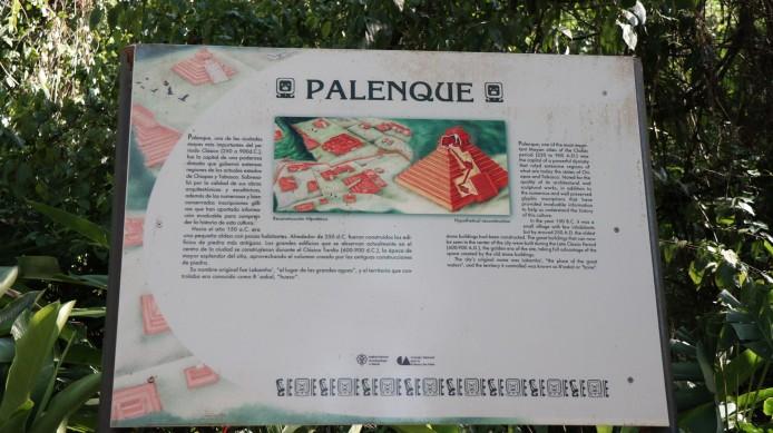 2018-04-18 San Cris (Palenque)-112