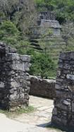 2018-04-18 San Cris (Palenque)-48