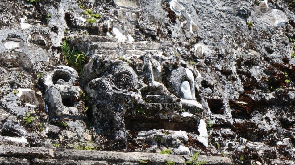 2018-04-18 San Cris (Palenque)-57