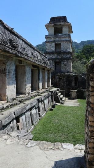 2018-04-18 San Cris (Palenque)-59