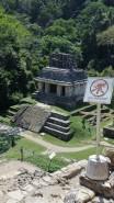 2018-04-18 San Cris (Palenque)-75