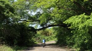 2018-05-30 Isla Meanguera_La Viejo-20