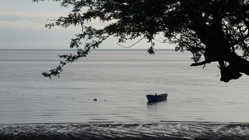 2018-05-30 Isla Meanguera_La Viejo-7