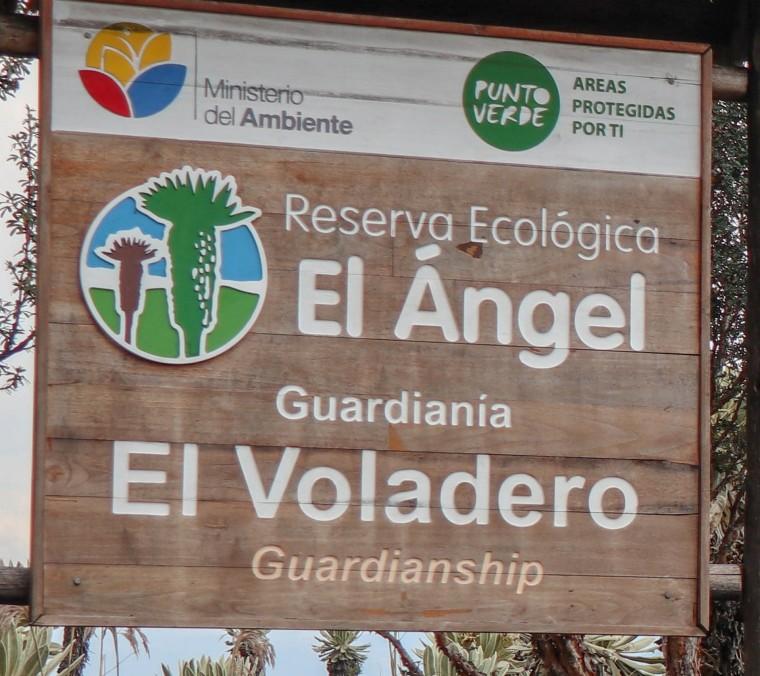 2018-10-01Tulcan_Reserva El Angel-143