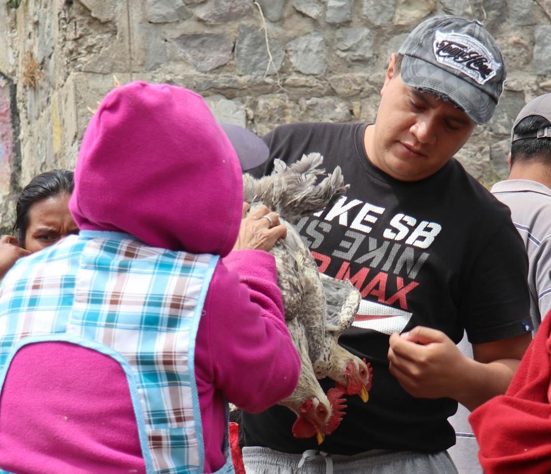 2018-10-06 Otavalo-114