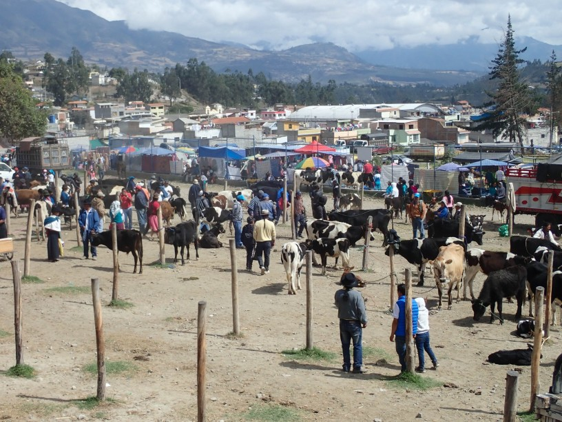 2018-10-06 Otavalo-185