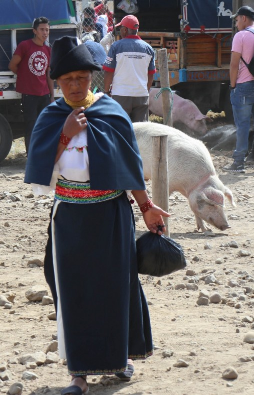 2018-10-06 Otavalo-59