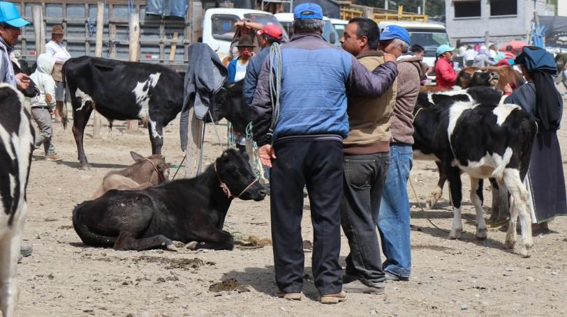 2018-10-06 Otavalo-70