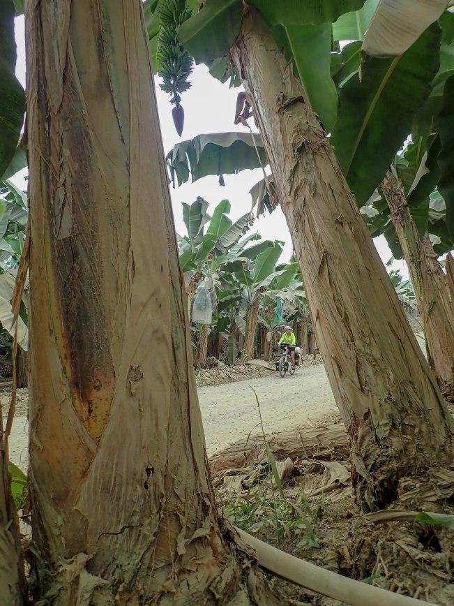 2018-10-20 Guayacam_La Mana-105