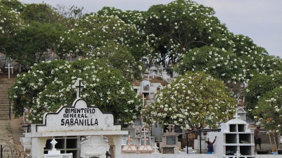 2018-10-25 Nobol_San Pedro-13