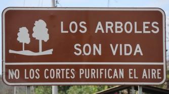 2018-10-25 Nobol_San Pedro-30