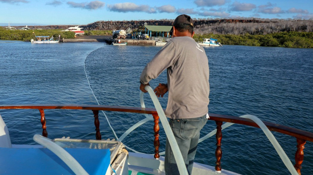2018-11-08 Isla North Seymour-261