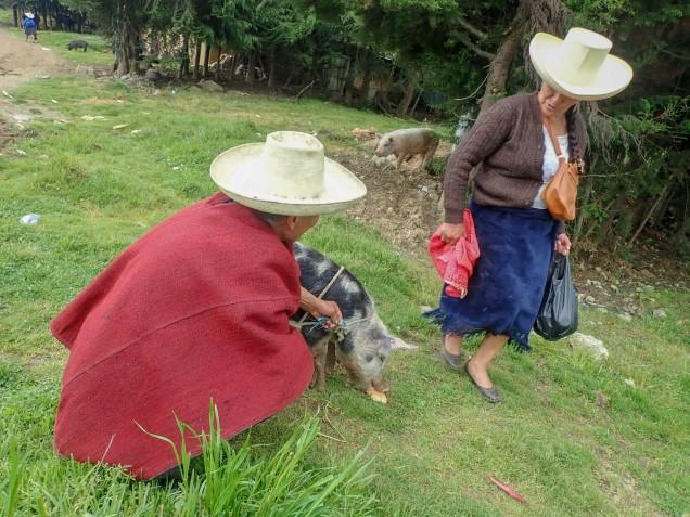 2019-04-20 Chota_Bambamarca-81