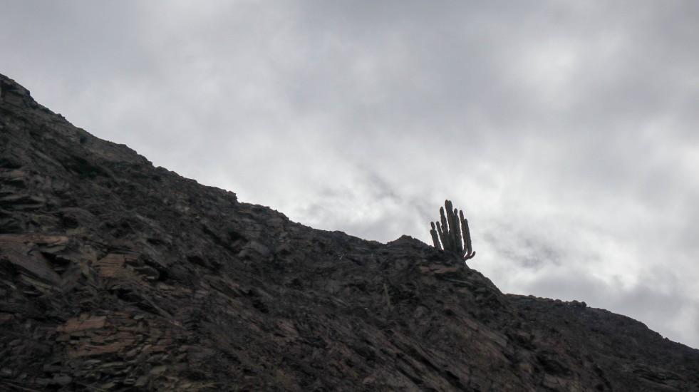 2019-05-05 Chuquimarca_Yuracmarca-113